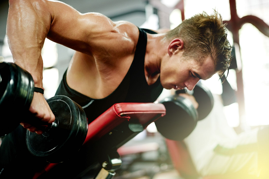 Which is The Best Gym Exercise Plan to Lose Weight?